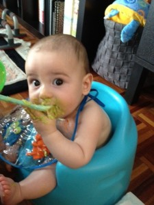 Making Your Own Organic Baby Food